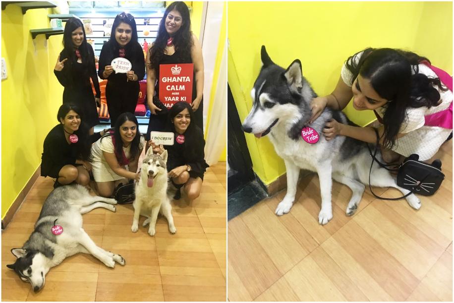 Ragini Mehra's Dog Friendly Bachelorette Party