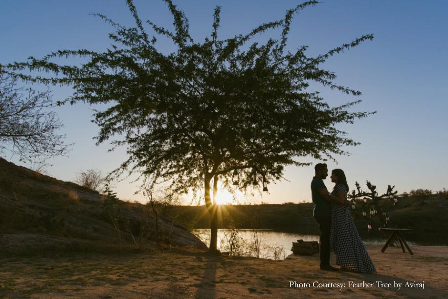 Feather Tree by Aviraj
